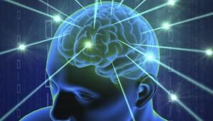320757-brain
